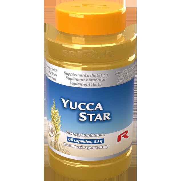 Enlarge pictureYUCCA STAR