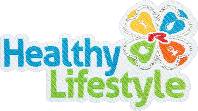 Enlarge picture Nažehlovací logo Healty Lifestyle 55mm