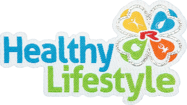 Enlarge picture Nažehlovací logo Healty Lifestyle 75mm